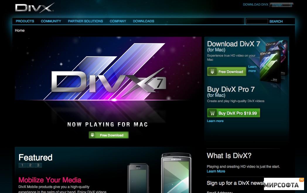 Скачать бесплатно видео в формате divx